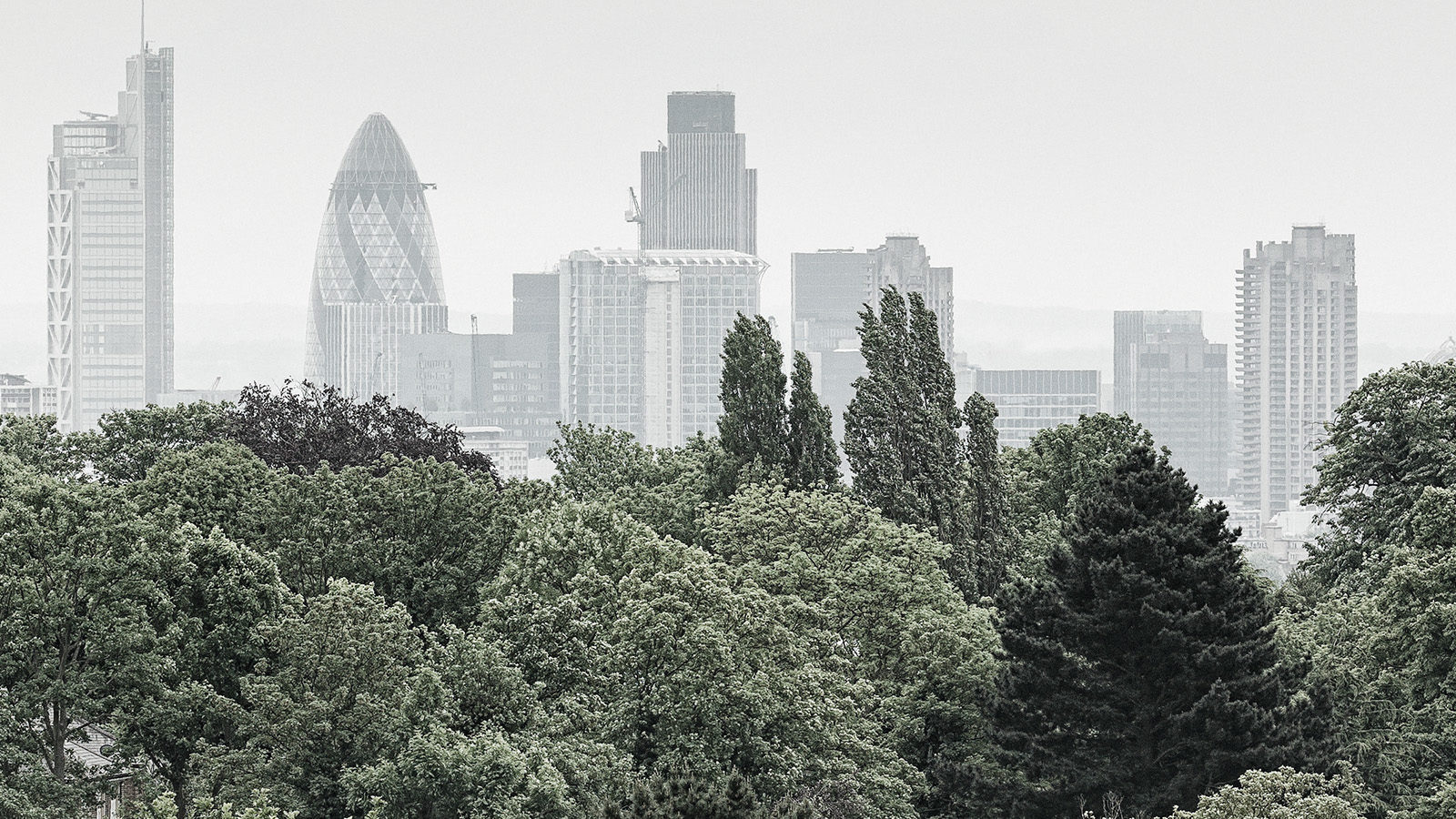 Hampstead Heath View 2010 - Detail of the City of London Skyline. High Res Panoramic Fine Art Print.