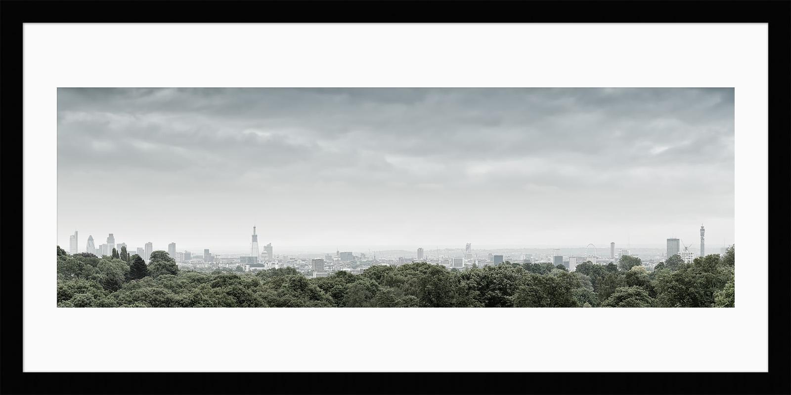 Hampstead Heath View 2010 - Framed Photo Print of London