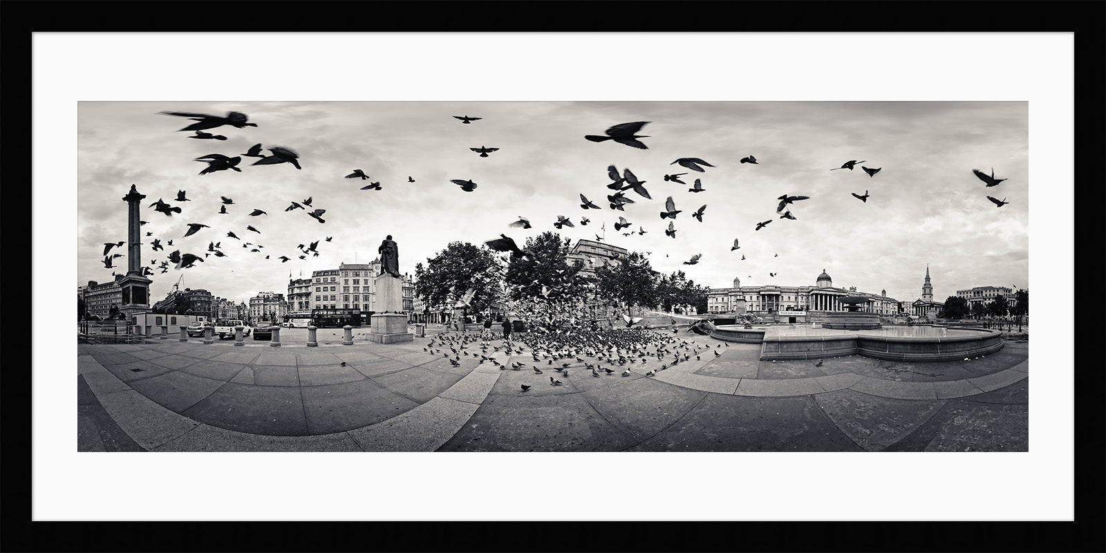 The Birds - Framed London Black & White Fine Art Photograph