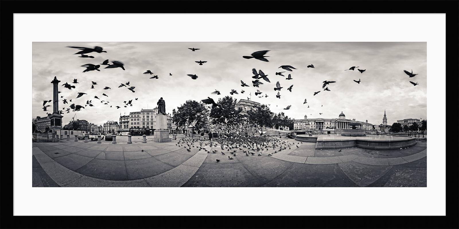 The Birds - Framed London Black & White Fine Art Photograph