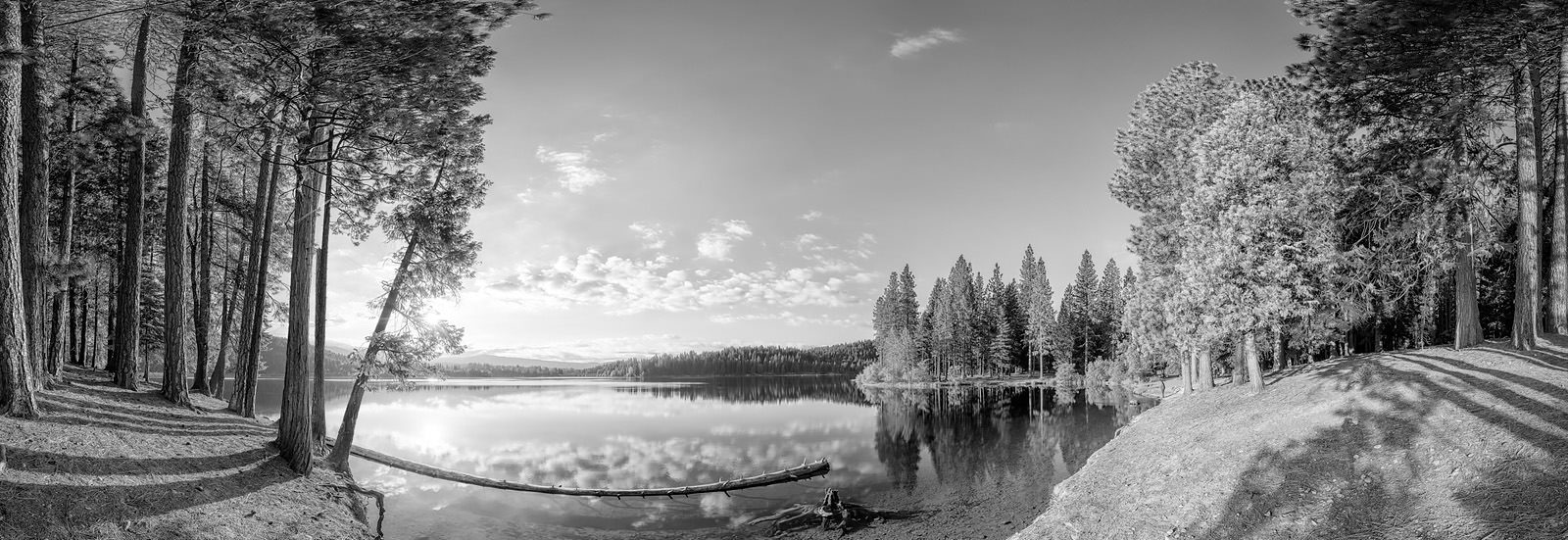 Lake Siskiyou Acrylic - California black and white Fine Art Print
