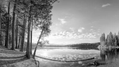 Lake Siskiyou California - Black & White Fine Art Photo Print.