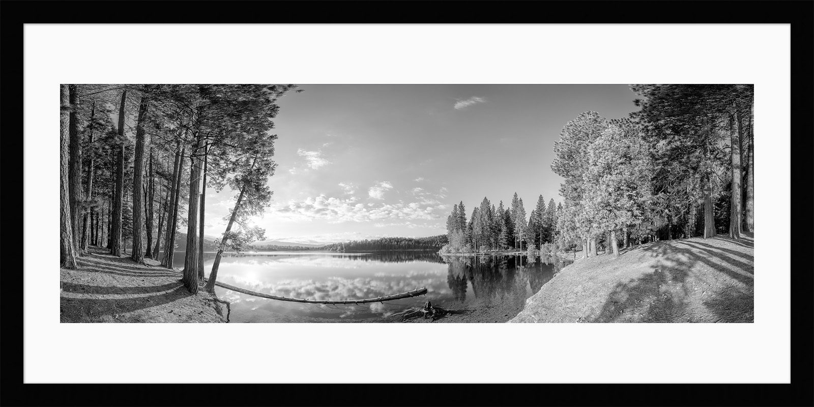 Lake Siskiyou - Framed California Black & White Fine Art Photography